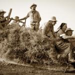Tempi di Aratura 2015 - Scene di vita contadina: la traja